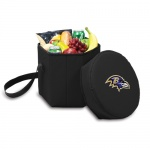 Baltimore Ravens Coolers
